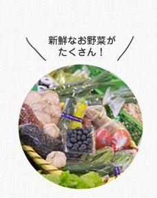 新鮮なお野菜がたくさん!